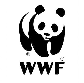 WTF WWF? (9/11 vs Tsunamis)