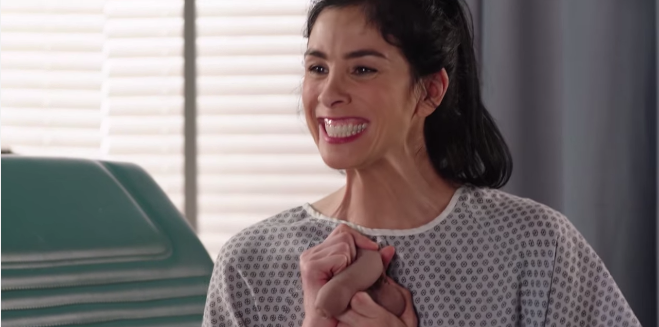 Sarah Silverman Closes The Gap